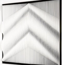 J. Margulis, Telluric White