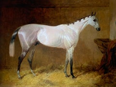 19th Century English Sporting Oil on Canvas of a Grey Hunter in a Stable