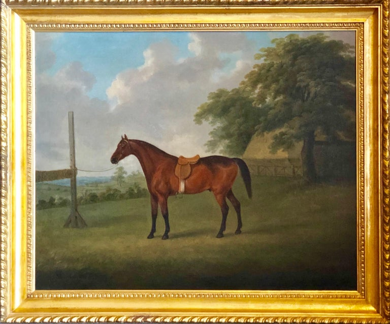 A Bay Horse in a Landscape by John  Nost Sartorius. 1