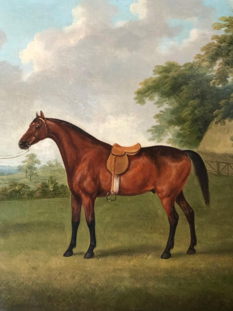 A Bay Horse in a Landscape by John  Nost Sartorius. 3