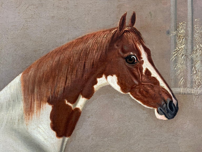 A Skewbald Pony in a Stable by G. Jackson For Sale 2