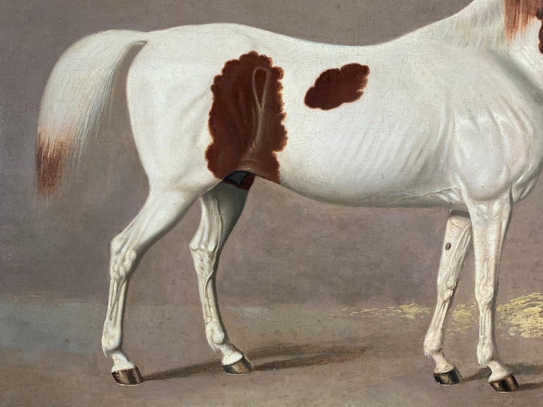 A Skewbald Pony in a Stable by G. Jackson For Sale 7