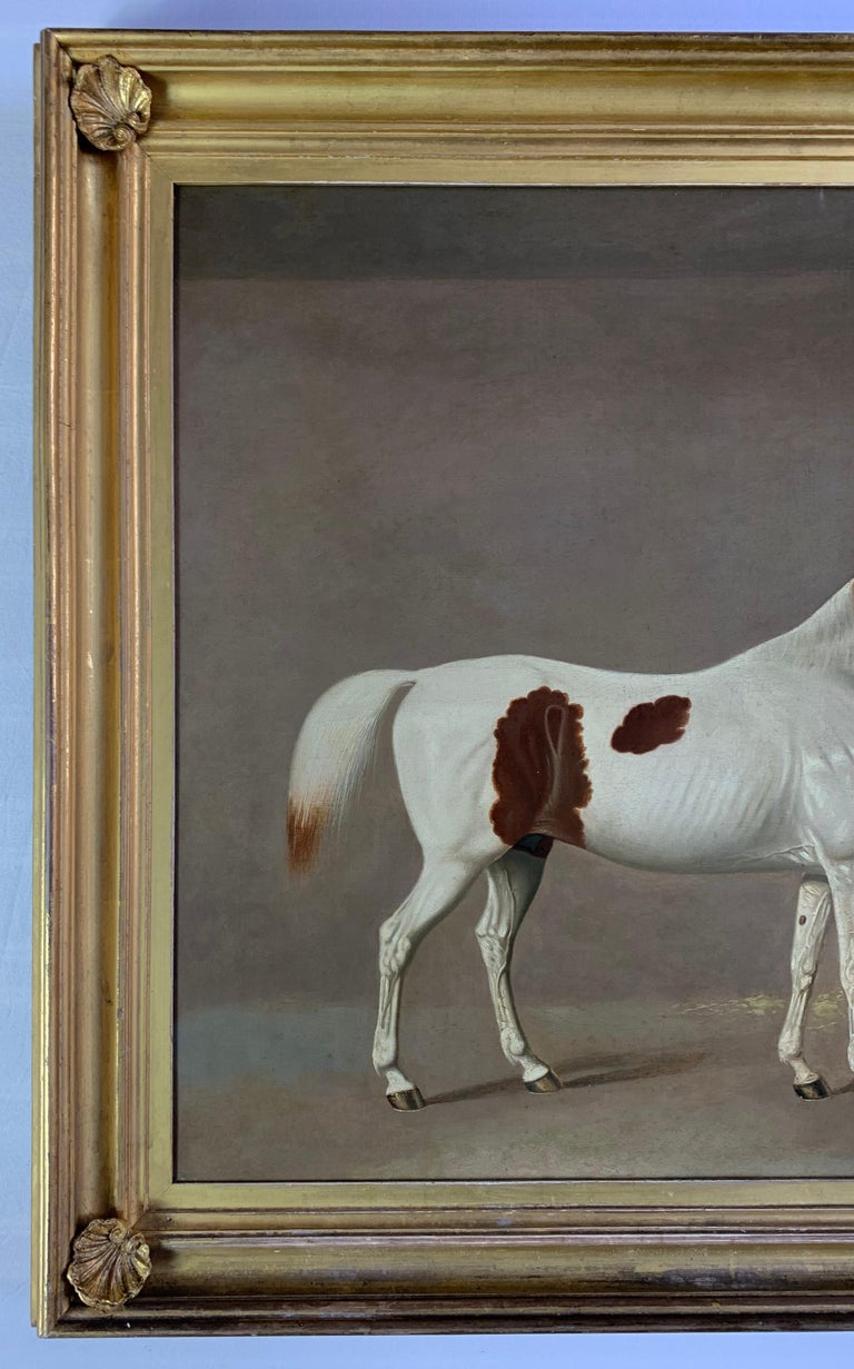 A Skewbald Pony in a Stable by G. Jackson For Sale 8