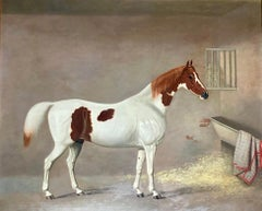 A White and Brown Thoroughbred Horse in a Stable by G. Jackson