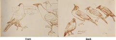 """Crows Series, Watercolour on paper, Rare Art by Indian Bengal Artist """"In Stock"""""""