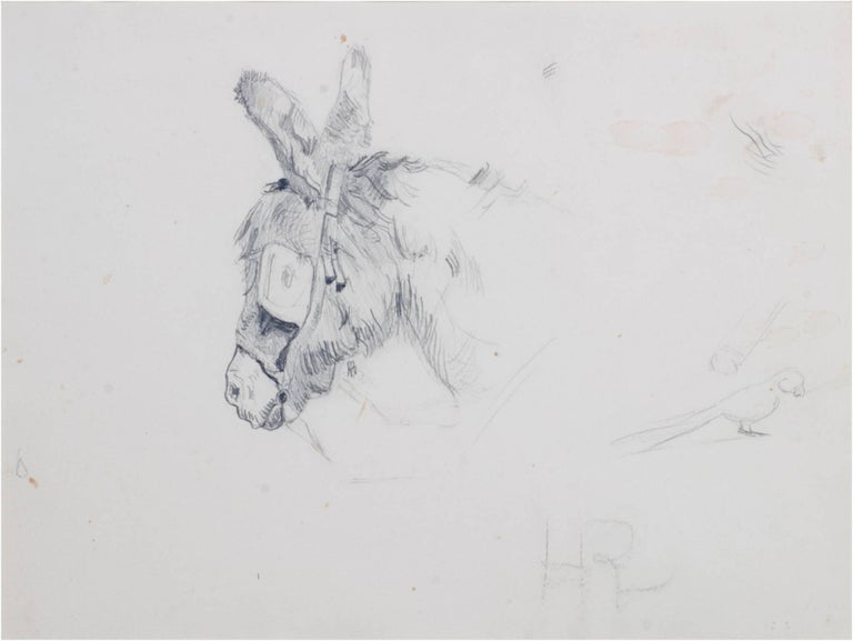"""Donkey with Blinders"" is an original pencil drawing by Hannah de Rothschild. The artist signed the piece in the lower center with her initials.   9 1/2"" x 12 1/2"" art 17 3/4"" x 20 3/4"" frame  Hannah Primrose, Countess of Rosebery (27 July 1851 – 19"