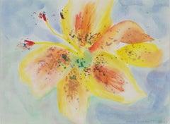 David Barnett Drawings and Watercolor Paintings