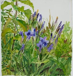 """""""Fringed Gentians,"""" Original Watercolor of Flowers signed by Alicia Czechowski"""