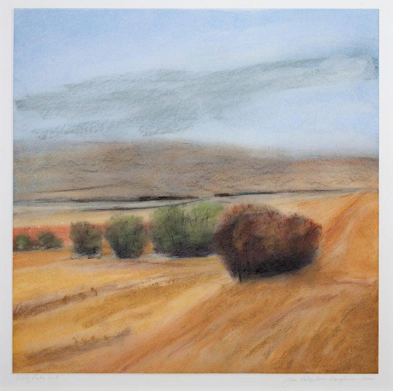 "Janet Richardson-Baughman Landscape Art - ""Wolf Lake I-8,"" framed pastel landscape drawing by Jan Richardson-Baughman"
