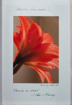 """Red Orange Flower, inscribed 'Happy Holidays!' - Peace in 2005 - Teri & Murray"""