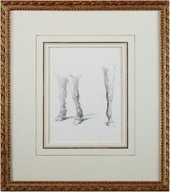 'Horse and Pony Legs,' original anatomical study in graphite by William Hall
