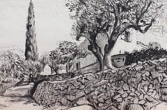 The Olive Tree Behind the Stone Wall