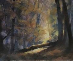 Trevor Waugh, The Fallen Tree, Original Oil Painting, Contemporary Landscape