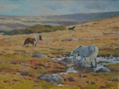 Colin Allbrook Autumn Dartmoor Original Contemporary Oil Painting