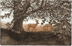 Summer Shadows, Jane Peart, Landscape Etching, Animal Print, Deer Art, Summer