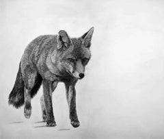 David Hunt, Fox 1, Original Animal Art, Contemporary Black and White Drawing
