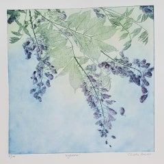 Wysteria, Charlie Davies, Limited Edition Etching, Contemporary Still Life Art