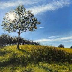 Marie Robinson, Sunlit Tree, Original Realist Landscape Painting, Uplifting Art