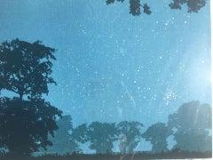 Anna Harley, Starlight, Bright Landscape Print, Contemporary Screen Print Art