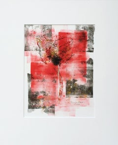 Mary Knowland, Poppy 17, Unique Mono Print, Affordable Art, Art Online