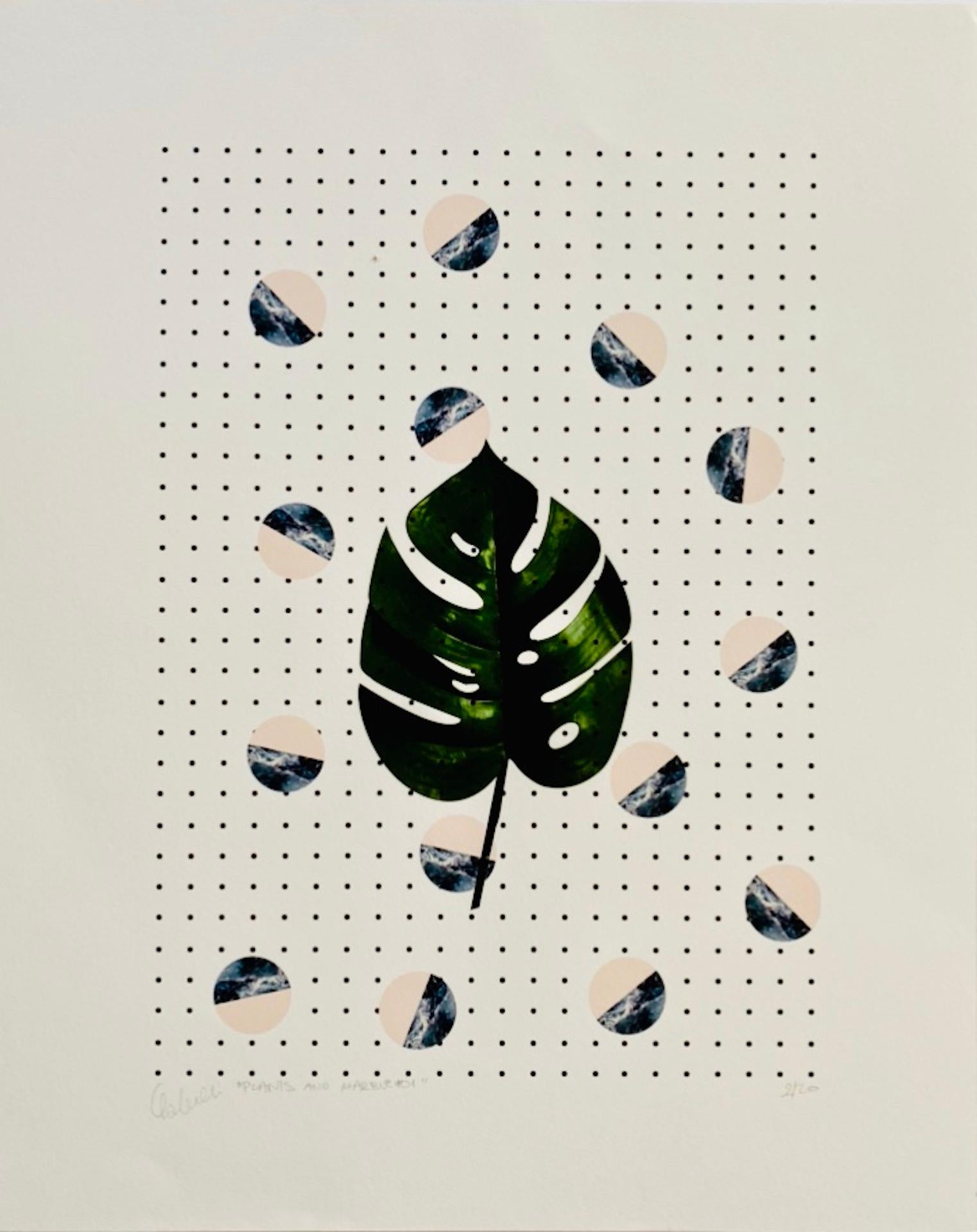 Fei Alexeli, Plants and Marble #1, Limited Edition Print, Affordable Art