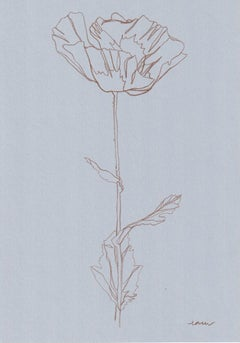 Ellen Williams, Poppy V Original Drawing, Floral Art, Minimalist Darwing