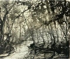 James Bonstow, River Dart, Original Landscape Painting, Affordable Art