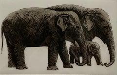 Jane Peart, Elephant Family, Limited Edition Etching Print, Elephant Art