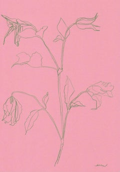 Ellen Williams, Clematis I, Original drawing, Affordable Art, Floral Art