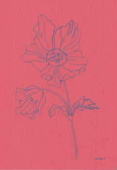 Ellen Williams, Anemone I, Original drawing, Affordable Art, Minimalist Art