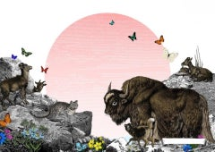 Kristjana Williams, The Himalayan Mountains – Pink Sun, Contemporary Animal Art