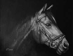 David Truman, Out of Darkness, Horse Art, Original Drawing, Equestrian Art