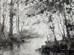 James Bonstow, Approaching River Dart I, Original Woodland Art, Affordable Art