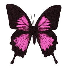 Claire Robinson, Papillio Ulysses - Neon Pink, Bright Art, Animal Art, Butterfly