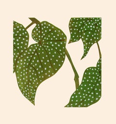 Kerry Day, Elephant Ears Begonia, Limited Edition Print, Contemporary Linocut