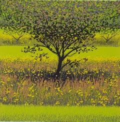 Mark A Pearce, Orchard Stripes, Contemporary Linocut Print, Bright Landscape Art