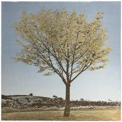Gold Leaf, Anna Harley, Tree Art, Contemporary Landscape Print, Calm Art, Blue