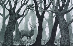 Jane Peart, Forest Glen,  Limited Edition Etching Print, Woodland Art