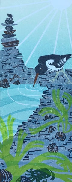 Sarah Weston, Rockpool, Limited Edition Print, Animal Art, Affordable Art