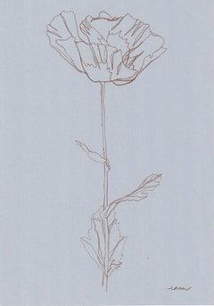 Ellen Williams, Poppy V Original Drawing, Floral Art, Minimalist Darwing