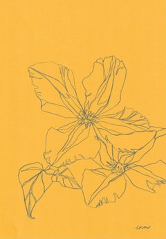 Ellen Williams, Clematis III, Original drawing, Affordable Art, Floral Drawing,