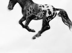 Hocus Pocus, realistic spotted horse flying, dynamic charcoal drawing, framed