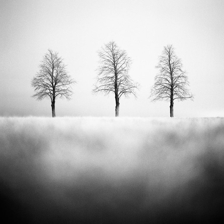 Matthew James Smith Landscape Photograph - #47