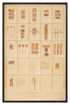 Journal herbier de Bordeaux