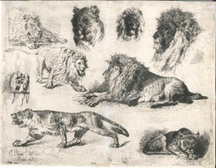 Lions - 1860s - Cesare Biseo - Drypoint - Old Master