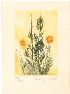 Delicate Flowers - Original Etching by Georges Vial - Mid 1900