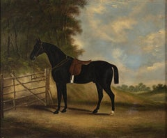 Thoroughbred Horse in a Stall - Original Oil on Canvas by Alfonso Grace - 1833