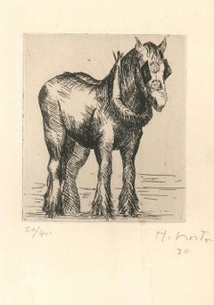 Horse - Original Drypoint by Helen Norton - 1930