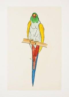 Parrot - Original Woodcut Hand Watercolored by Anonymous French Artist