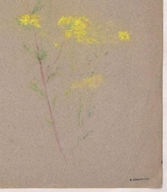 Mimosa Flower - Colored Pastel on fabric by E.-E. Duc - Late 19th Century